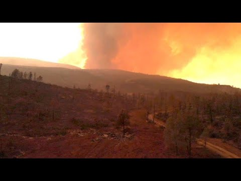 USA: Verzweifelter Kampf gegen Rekord-Feuer in Kalifo ...