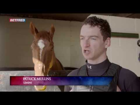 Willie And Patrick Mullins On Limini