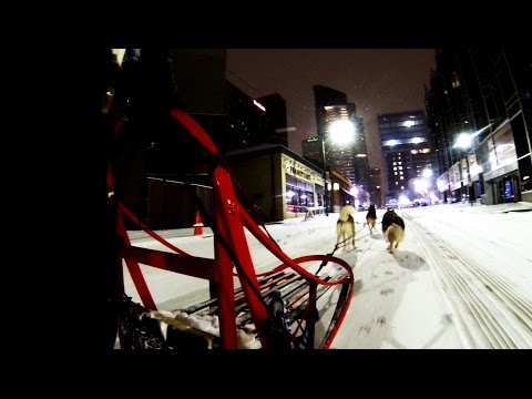 WATCH: GoPro Downtown Pittsburgh Dog Sledding 2016