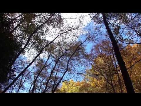 USA - Smoky Mountais, GA - Visit to North Georgia - 11-02-2013 (видео)