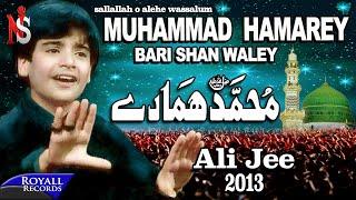 Ali Jee | Muhammad Hamarey | 2013 |محمد ہمارے