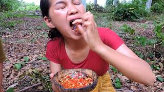 Video Primitive Technology - Pretty girl Find cook Centipede  on rock -  cooking worms  eating delicious MP3, 3GP, MP4, WEBM, AVI, FLV April 2019