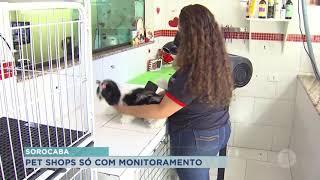 Sorocaba aprova lei que exige monitoramento em pets shops