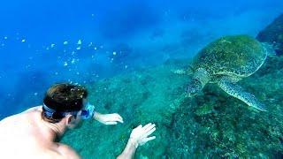 Liuqiu Taiwan  city images : GoPro Hero 4 Session - Scuba Diving Xiao Liu Qiu island in Taiwan