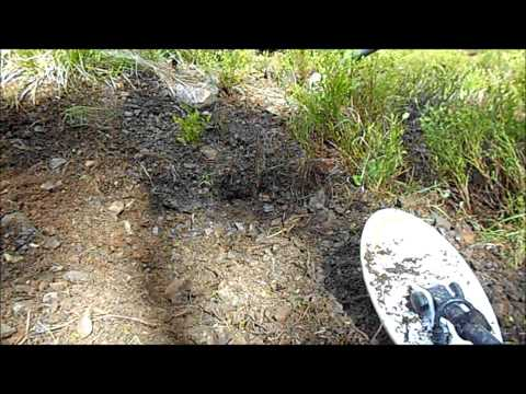 Metal Detecting for Gold Nuggets with the Fisher Gold Bug Pro