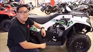 9. 2018 Kawasaki Brute Force 300 - Walk Around