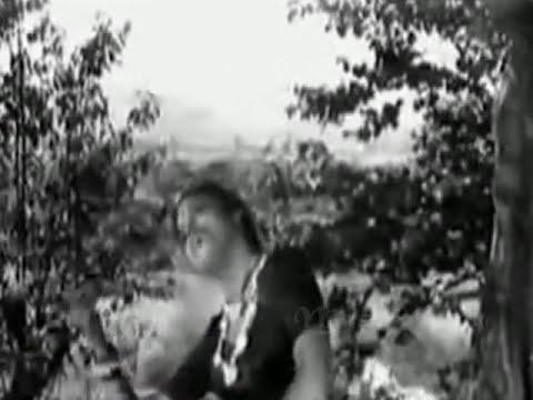 din suhane yeh mausam bahar ka..Lata- Shailendra- S J - Poonam1952..a tribute (видео)