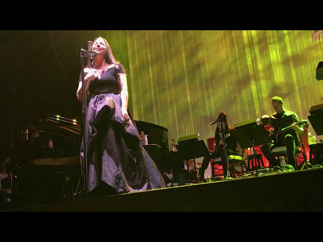 Evanescence-imperfection-live-debut
