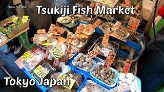 Video TSUKIJI FISH MARKET - Japanese Street Food In Tokyo Japan MP3, 3GP, MP4, WEBM, AVI, FLV Mei 2019