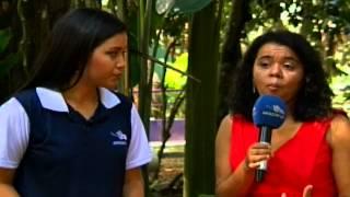 Dia Internacional sobre o Abuso e Tráfico Ilícito de Drogas Fazenda da Esperança recupera viciados em drogas e álcool