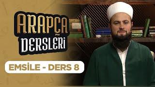 arapça öğreniyorum ders 8 lalegül tv