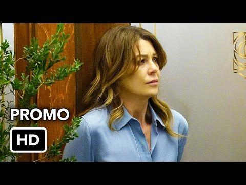 Grey's Anatomy 13.19 Preview