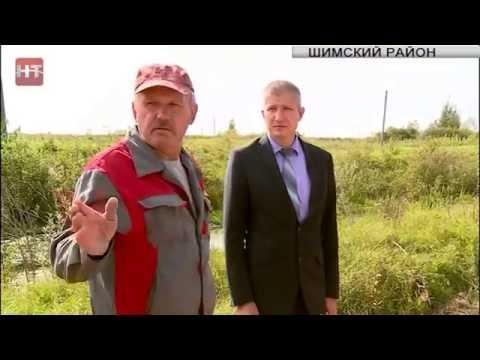 Дороги Новгородчины: Шимский район