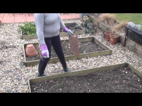 Gardening Jobs – Companion Planting in March