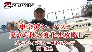 ルアー合衆国+ 東京湾シーバス、夏から秋の変化を攻略!(岡直之 東京湾)