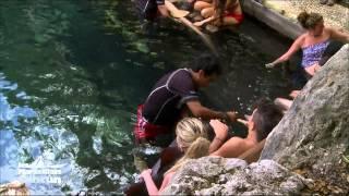 Video Extrait : Les Marseillais nagent avec les requins !!! / Du lundi au vendredi à 16:30 sur W9 ! MP3, 3GP, MP4, WEBM, AVI, FLV Agustus 2017