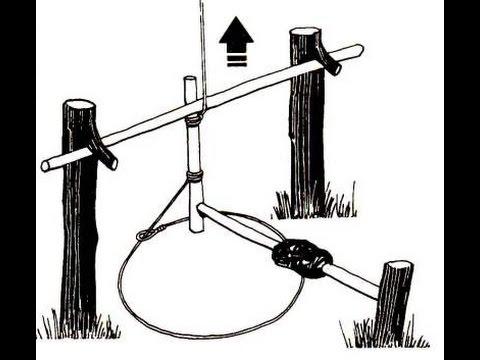 ловите дроту