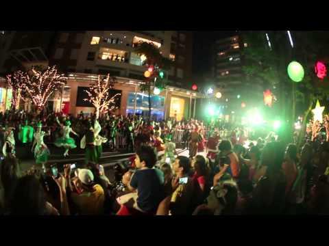 Rua Encantada de Natal 2014 - Pedra Branca Cidade Criativa