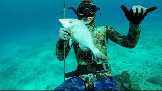 Poindimie New Caledonia  city pictures gallery : Spearfishing - North&South Expeditions