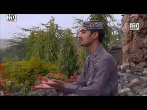 Video Muhammad Hasnain Ali Qadri  AJJ AMAD HE PYARE NABI KI download in MP3, 3GP, MP4, WEBM, AVI, FLV January 2017