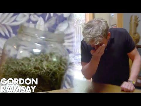 """High As A Kite"" Owner Shows Gordon His Medicinal Marijuana 