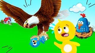 IRMÃO DO PINTINHO AMARELINHO É PEGO PELO GAVIÃO!egg  kids, kid, family, familia, baby, bebê, aquarela kids, videos para criancas, children, videos para familia, infantil, pintinho amarelinho, pintinho galinha pintadinha