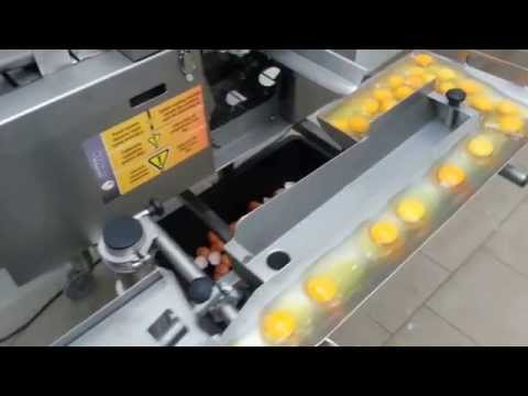 How a machine separates egg yolks from egg whites