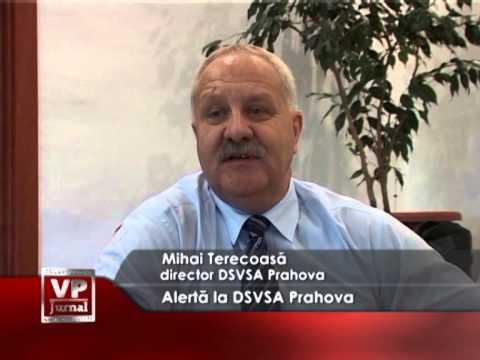 Alertă la DSVSA Prahova
