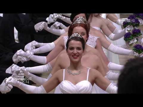Wiener Opernball 2014 - 58. Wiener Opernball - Einzug ...