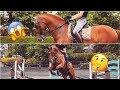 DRESSAGE HORSE TRIES SHOWJUMPING || MATT HARNACKE - PART 2