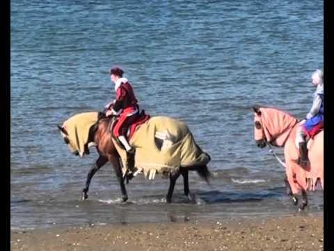 Doma de caballos (II) - XI Mercado Medieval