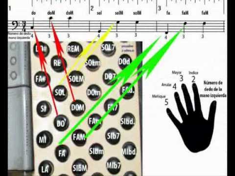 Aprender a tocar acordeon con práctica