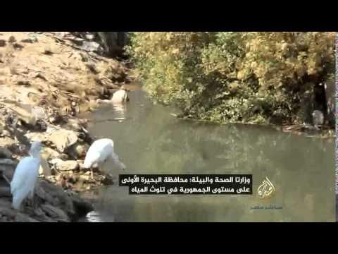 بالفيديو.. مركز حقوق الإنسان: «قها» الأولى عالمياً في تلوث المياه وأمراض الفشل...