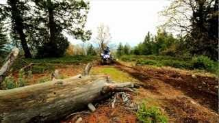 9. The 2013 Yamaha Raptor 250