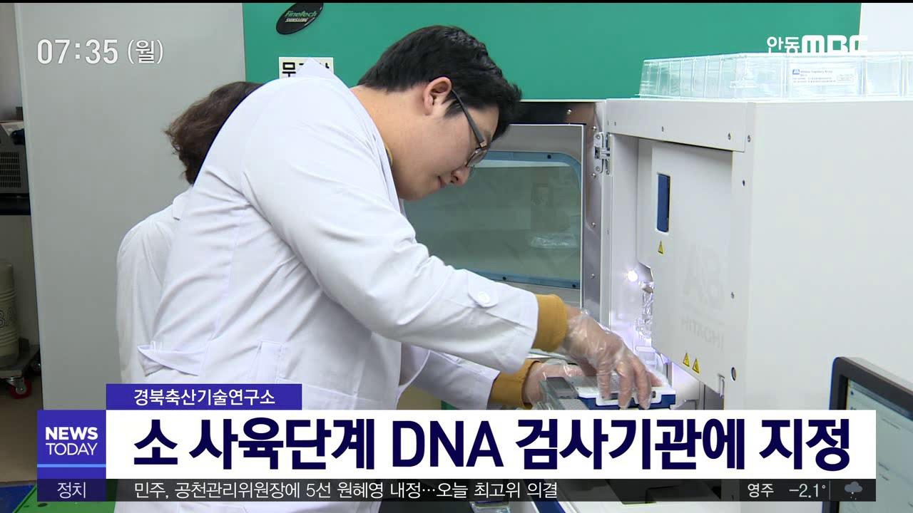 소 사육단계 DNA 검사기관 지정