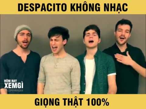 Despacito không hề có nhạc, giọng thật 100% luôn đấy