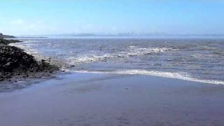 Video Tsunami in San Francisco Bay, March 11, 2011 MP3, 3GP, MP4, WEBM, AVI, FLV Oktober 2018