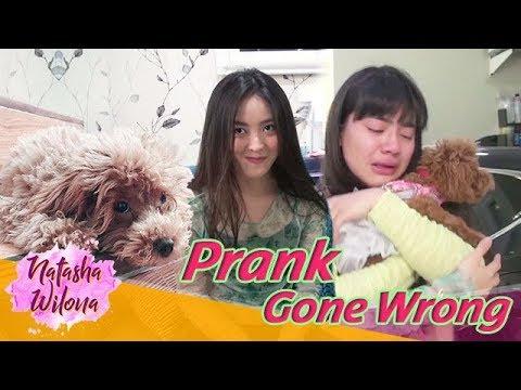 Download Video Prank Sahabat Sendiri Sampai Nangis! PRANK GONE WRONG!!!