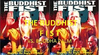 Nonton Kung Fu Lovers   Buddhist Fist Vs  Buddha Palm  Amazing Fight Sequences  Film Subtitle Indonesia Streaming Movie Download