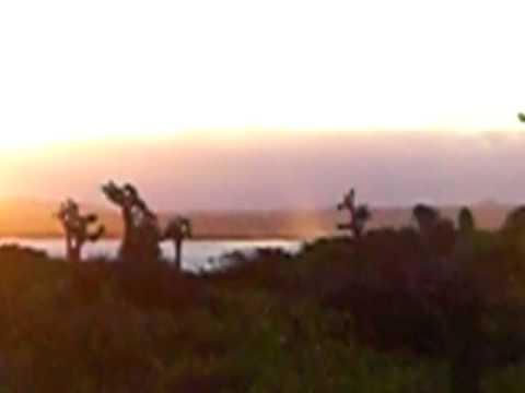 Last sunset at Galapagos Islands. On Isabela Island, Ecuador. March 2008.
