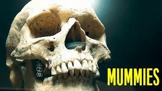 Страшная выставка - музей мумий