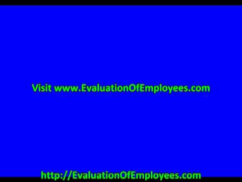 Employee Evaluation Comments