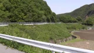 犬山市池野・天然記念物ひとつばたご自生地・開花中