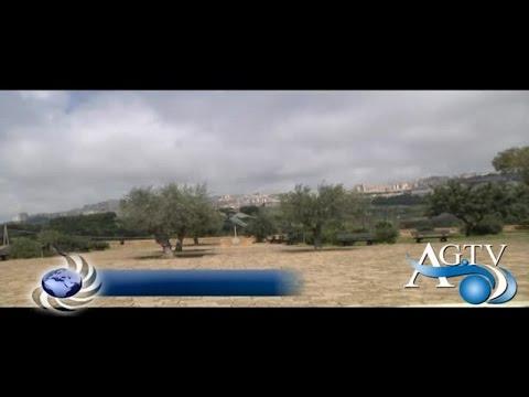 Valle dei Templi, sopralluogo dell'Anas e del Comune