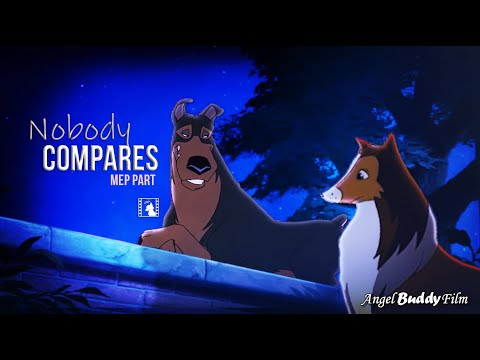 """""""Nobody Compares"""" - Buster x Lassie (MEP PART)"""