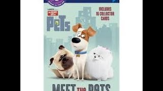 The Secret Life Of Pets MEET THE PETS Read Along Aloud Story Audio Book for Children Kids