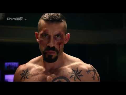 Boyka  Undisputed 4 2016   Scott Adkins   All Fight Scenes   Best Shorts HD1080P