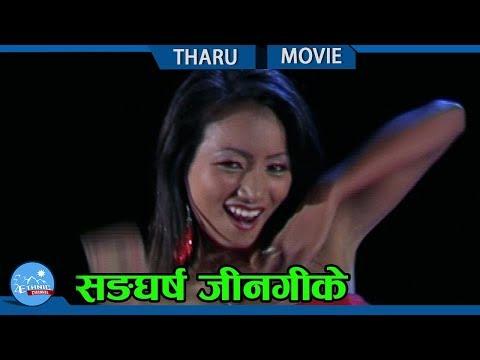 Video New Tharu Movie || Sangarsah Jingike download in MP3, 3GP, MP4, WEBM, AVI, FLV January 2017