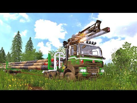 FS17 Phoenix Longwood Truck v1.0
