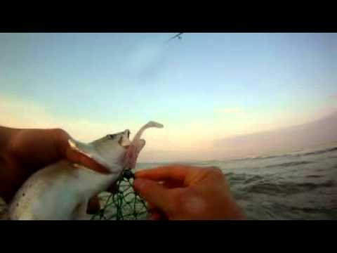 Catching Specks wade fishing in Mississippi – May 2012